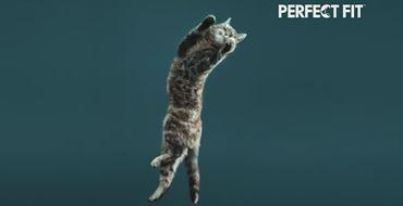 Реклама Perfect Fit — Прыжок в 6 раз выше тела (2021)