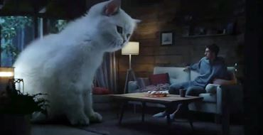 Реклама Супрастин — Большой котенок (2021)
